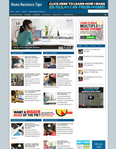 HOME-BUSINESS-ADVICE-UK-AFFILIATE-STORE-WEBSITE-NEW-DOMAIN-NAME-amp-HOSTING