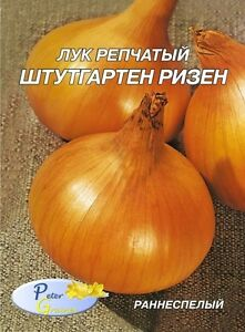 Johnsons 250 Seeds Onion Vegetable Senshyu Yellow Japanese
