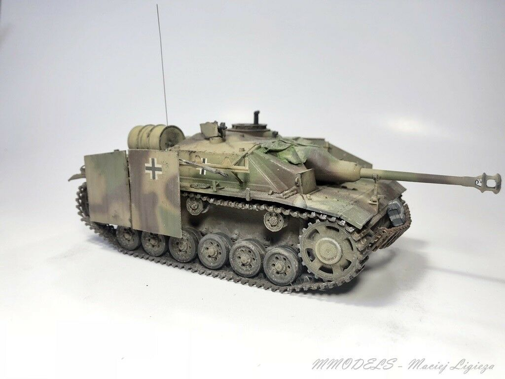PzKpfw III - STUG 213 -  1 35 - built and painted (Pro-Built)