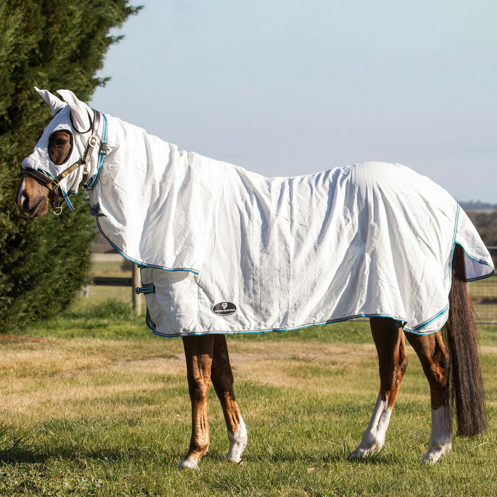 Flag Horse Rug With Hood Set 210 Gsm By