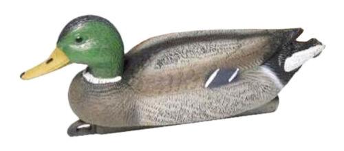 Fritz hombre lockente nadando 40cm verde cebo celular Erpel pato real