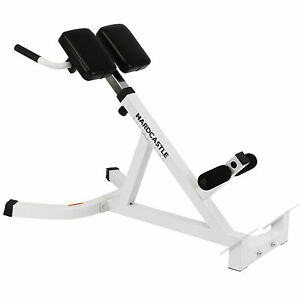 Marvelous Image Is Loading ADJUSTABLE BACK HYPEREXTENSION GYM BENCH ROMAN CHAIR  REVERSE