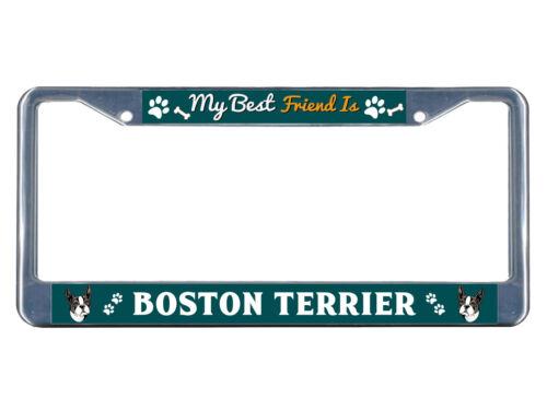 Boston Terrier Dog My best friend Chrome Metal License Plate Frame Tag Border