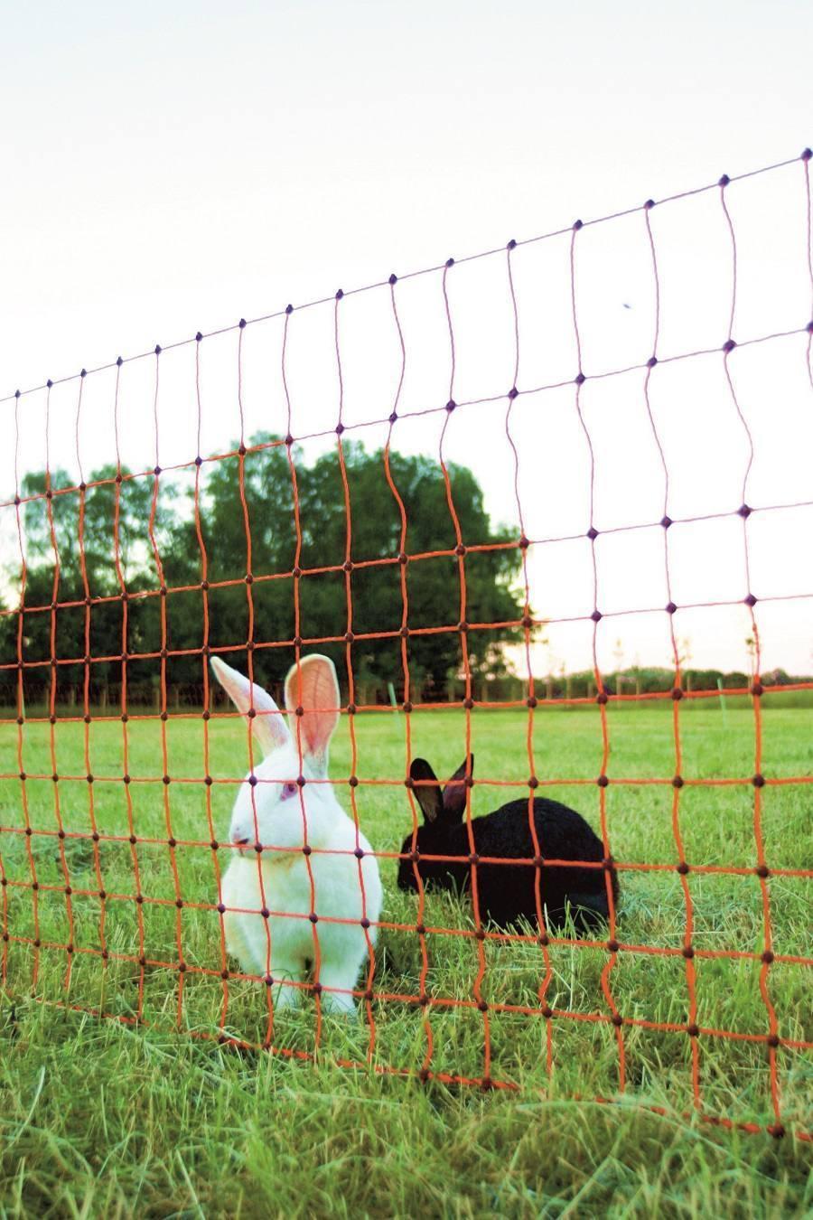 Rete Coniglio-piccoli animali recinto - 65 1 12m verde con punta singola di KERBL