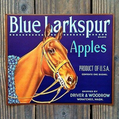 Vintage Original BLUE LARKSPUR APPLE fruit box crate label NOS never used