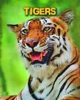 Tigers by Anna Claybourne (Paperback, 2015)