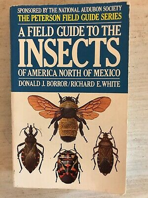 Peterson Field Guide To Insects Of America North of Mexico 1970 Paperback  Book | eBay