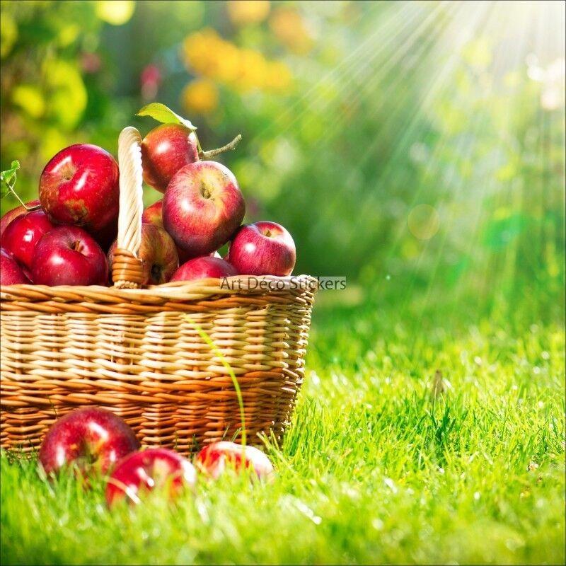 Wandaufkleber Deko  Korb Äpfel 1653