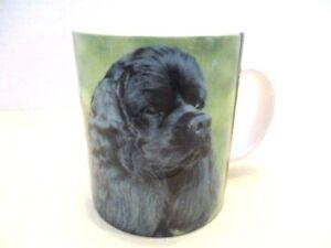 Original-Color-Cocker-Spaniel-Ceramic-Cup-Mug