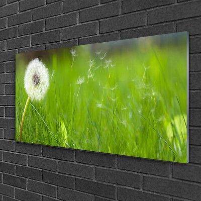 Wandbilder 100x50 Glasbild Druck auf Glas Pusteblume Gras Pflanzen
