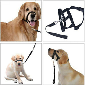 Dog Head Mouth Cover Collar Stop Pulling Halter Lead Leash Training Pet S-2XL