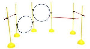 Multi activity set  Kit Agility speed Training XLR dog fitness cone hoop pole