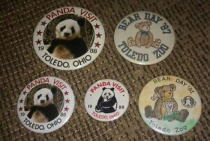 Vintage Toledo Ohio Zoo Pinback Button PIN lot of 5 panda & bear day 1980's
