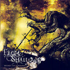 Beyond the Unknown [EP] by From the Shallows (CD, May-2007, Tribunal Records)