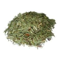 Shave Grass- Cola De Caballo - Horsetail - 1 Oz