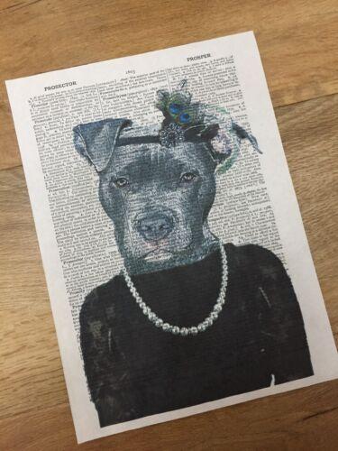 Staffordshire Bull Terrier Dictionnaire Imprimer Art Photo Imprimé Staffy fille chien