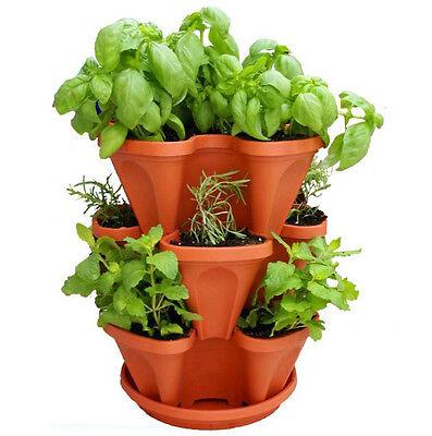 3 Tier Indoor Vertical Stackable Vegetable Flower Herb Garden Planter Pot: Terra