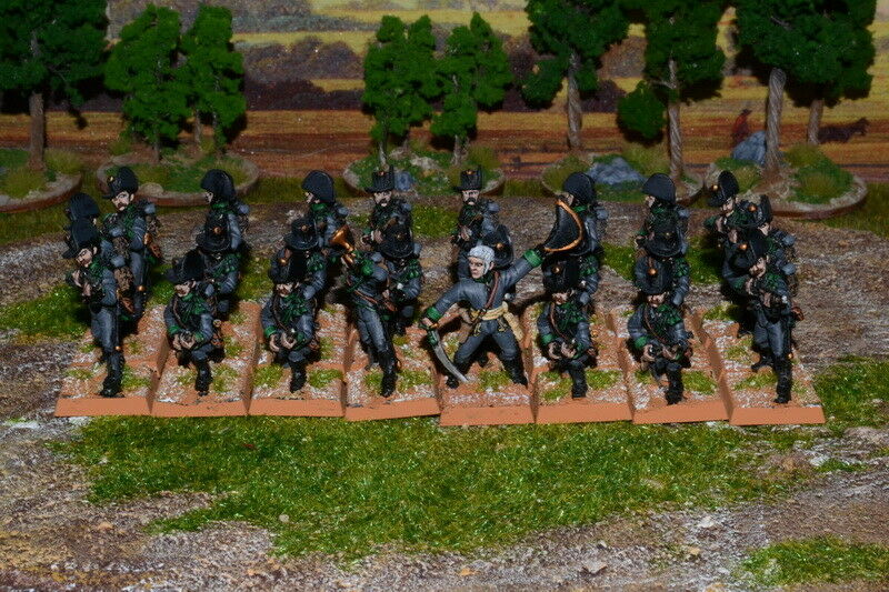 1 56 28mm Napoleonic DPS Painted Austrian Jager Battalion RC732