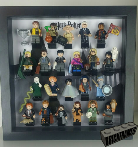 22 FIG and ALL Accessories Minifigure Display Frame Case for LEGO Harry Potter