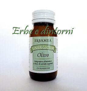 OLIVO Sinergicum 50 cpr. Pressione alta, ipertensione..