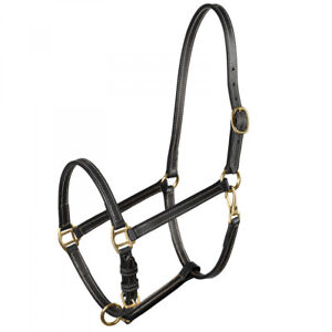 Horze-Fremont-Economical-Leather-Halter-with-Adjustable-Nose-and-Throat-Snap