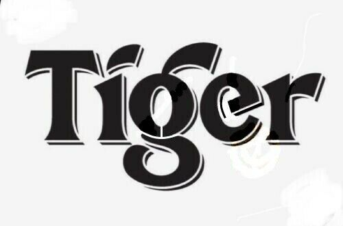 high detail airbrush stencil captain tiger beers FREE UK POSTAGE