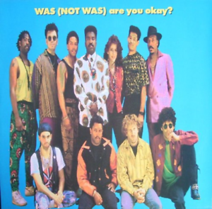 Was Not Was-Are You Ok (US IMPORT) CASS NEW