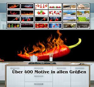 kchenrckwand plexiglas ber 400 motive spritzschutz fliesenspiegel herd - Motive Fur Kuchenruckwand