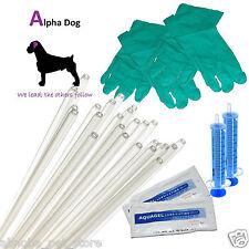 20 - Dog Standard Canine Artificial Insemination Sheath Tube Breeding Kit AI Rod