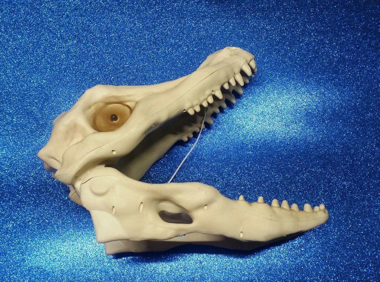 Large Dinosaur alligator Skeleton Head Eyes Light Up And Roars