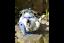 Fairy-Treehouse-Teapot-Sunflower-House-Wishing-Well-Metal-Garden-Decor-Ornament thumbnail 20