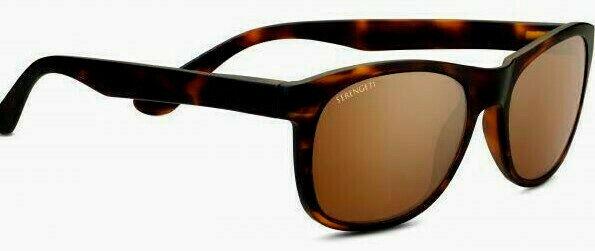 NEU SERENGETI SCALA 8604 POLARIZED Sonnenbrille Eyewear Worldwide Shipping Shipping Shipping   Vollständige Spezifikation  b63db0