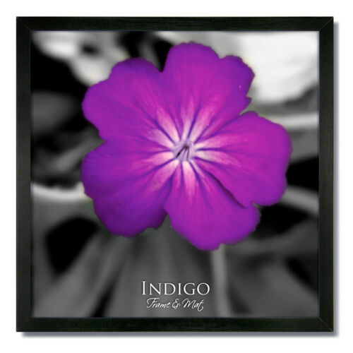 One 16x16 Square Black Wood Picture Frame and Clear Glass