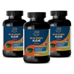 immune-support-Blue-Green-Algae-500mg-antioxidant-3-Bottles-180-Capsules
