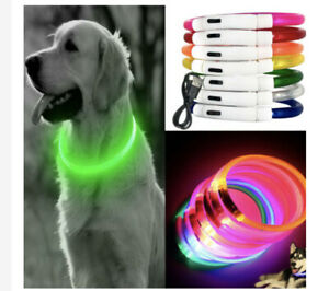 Dog Collar Pet Safety Neck Ring Glowing LED USB Rechargeable No Batteries