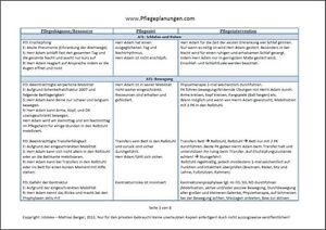 das bild wird geladen uber 2000 formulierungshilfen fuer eine pflegeplanung 3 pflegeplanungen - Pflegeplanung Schreiben Muster