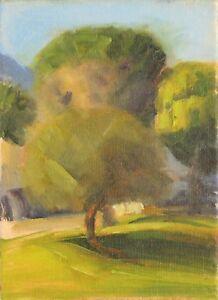 Original-Oil-PAINTING-CALIFORNIA-IMPRESSIONISM-Plein-Air-Landscape-VETERANS-PARK