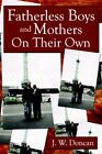 Fatherless Boys and Mothers on Their Own by J W Doncan (Paperback, 2006)