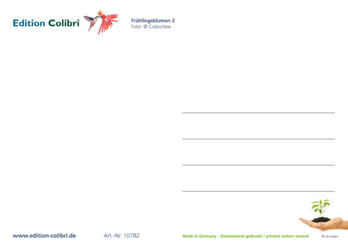 "/""FRÜHLING /& OSTERKARTEN/"" Postkarten-Set Blumen 5 St. ideal für Postcrossing"