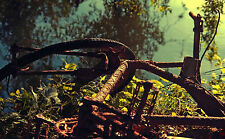Framed Print - Rusted Old Push Bike Laid in a Field (Picture Poster Bicycle Art)
