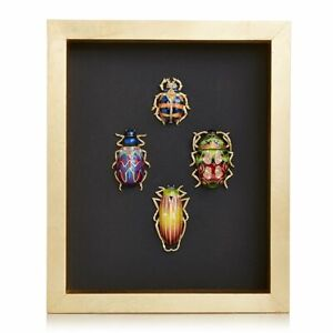 Jay Strongwater William Beetle Wall Art 14K gold, Swarovski  SHW3328-250 NEW