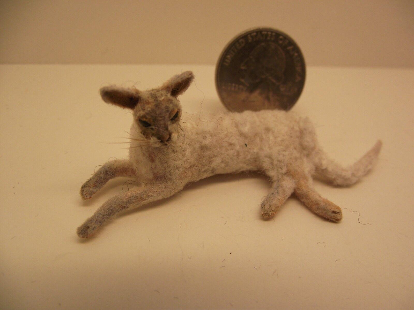 1 12 Scale Miniature Dollhouse Weiß Cornish Rex Cat by Lucy Maloney