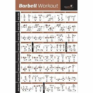 Details About Barbell Workout Exercise Poster Laminated Home Gym Weight Lifting Chart B