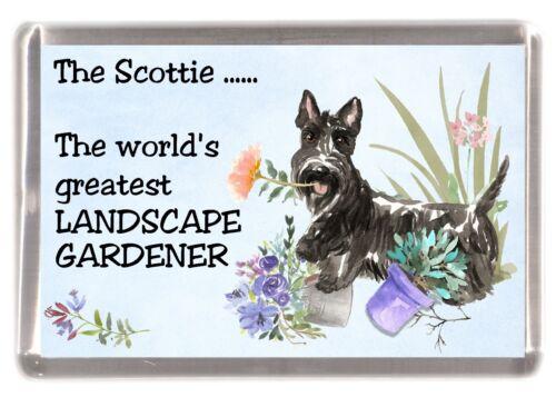 """Scottish Terrier Scottie Dog Fridge Magnet /""""Greatest Landscape Gardener/"""""""