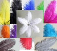 10 Ostrich Feathers 8-10 Choose Color Or Mix Drabs Plumes Add'l Ship Free