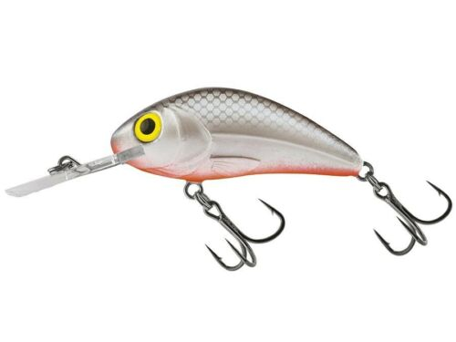 Salmo Rattlin/' Hornet H6.5F 2-1//2inch 20g floating crankbait Chub Trout Lure