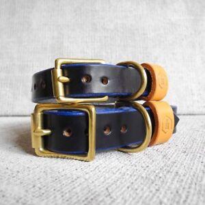 Collier pour chien en cuir avec brides London Series (bleu brigand) Grand 37-46cm
