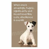 Fridge Magnet Picture Cute Jack Russell Terrier Obedience Is Overkill