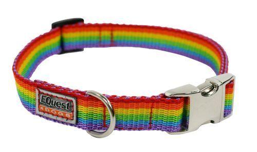 arco iris, 25mm Rechoncha /& Friends-cuello para perro banda Fashion