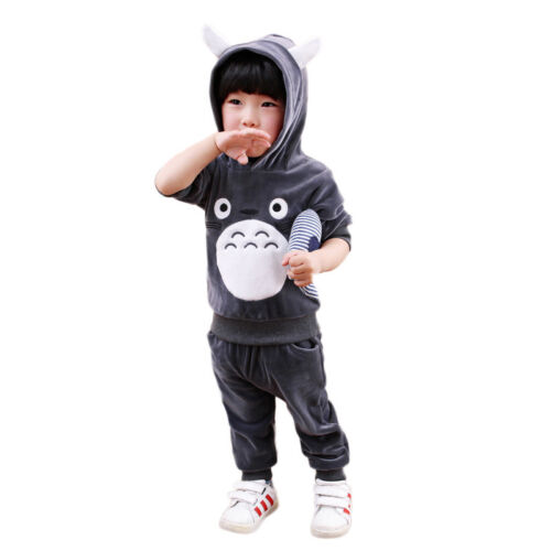 2PCS Toddler Kids Baby Boy Girl Hoodie T-shirt Tops Pants Clothes Outfits Set US